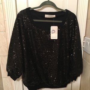 NWT Zara sequence pullover